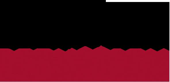 Bezmialem Vakif University